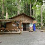 【とやの沢オートキャンプ場】ソロからファミリーまで最高のキャンプ場!
